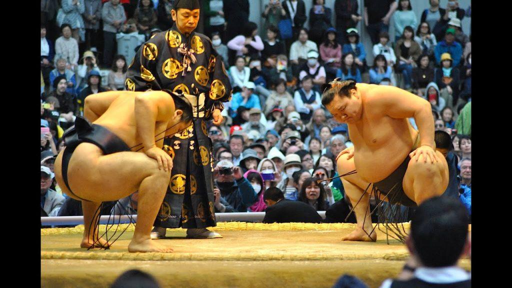 Yokozuna Sumo Wrestler